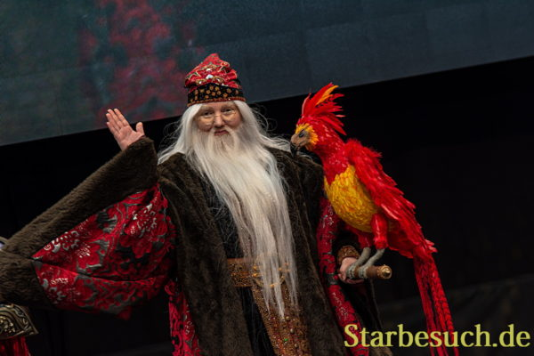 Cosplay - Dumbledore from Harry Potter